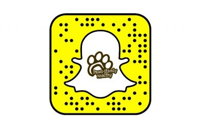 We Are On Snapchat!